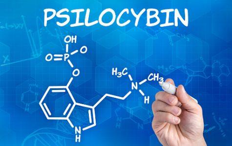 Psilocybin: The Secret Ingredient to Treating Depression
