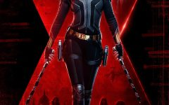 The Final Black Widow Trailer Released