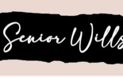 Abby Colston's Senior Will